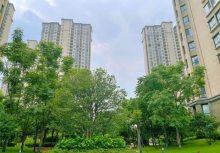 (开发区)吾悦华府3室2厅2卫165.8万132m²出售